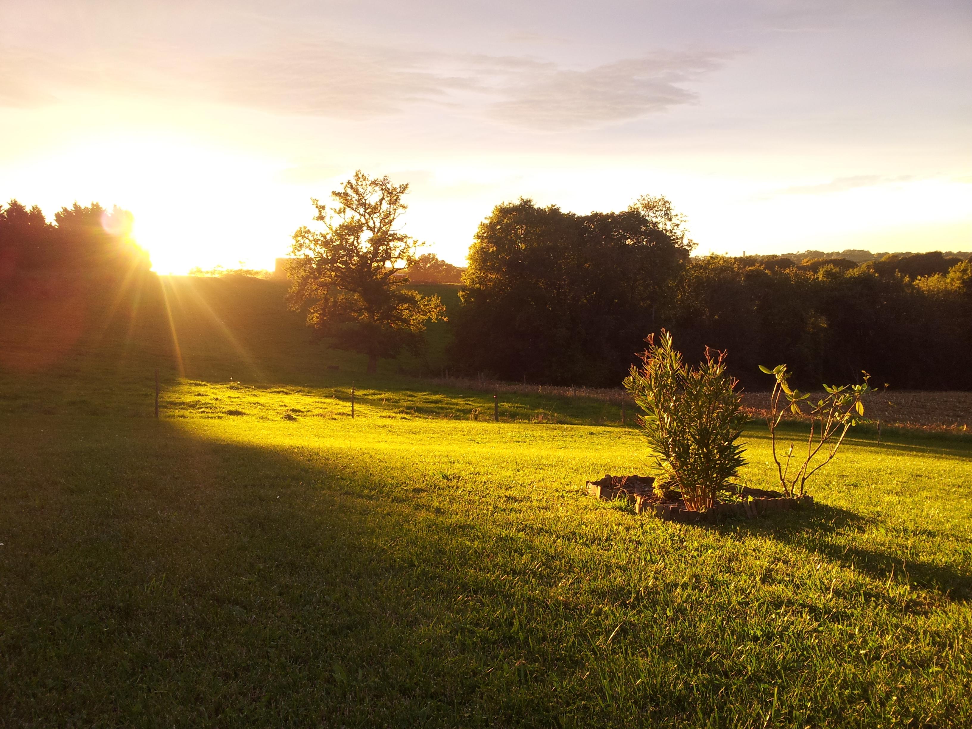 Couhé de soleil | Photo Denis Gaulin